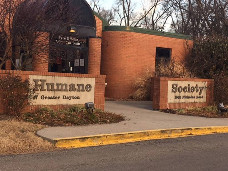 The Humane Society of Greater Dayton Provides Resources To Domestic Violence Victims